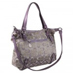 Beautiful Bag In The World Simple Purple Color 150x150 Beautiful Bag In The World for Your Collection